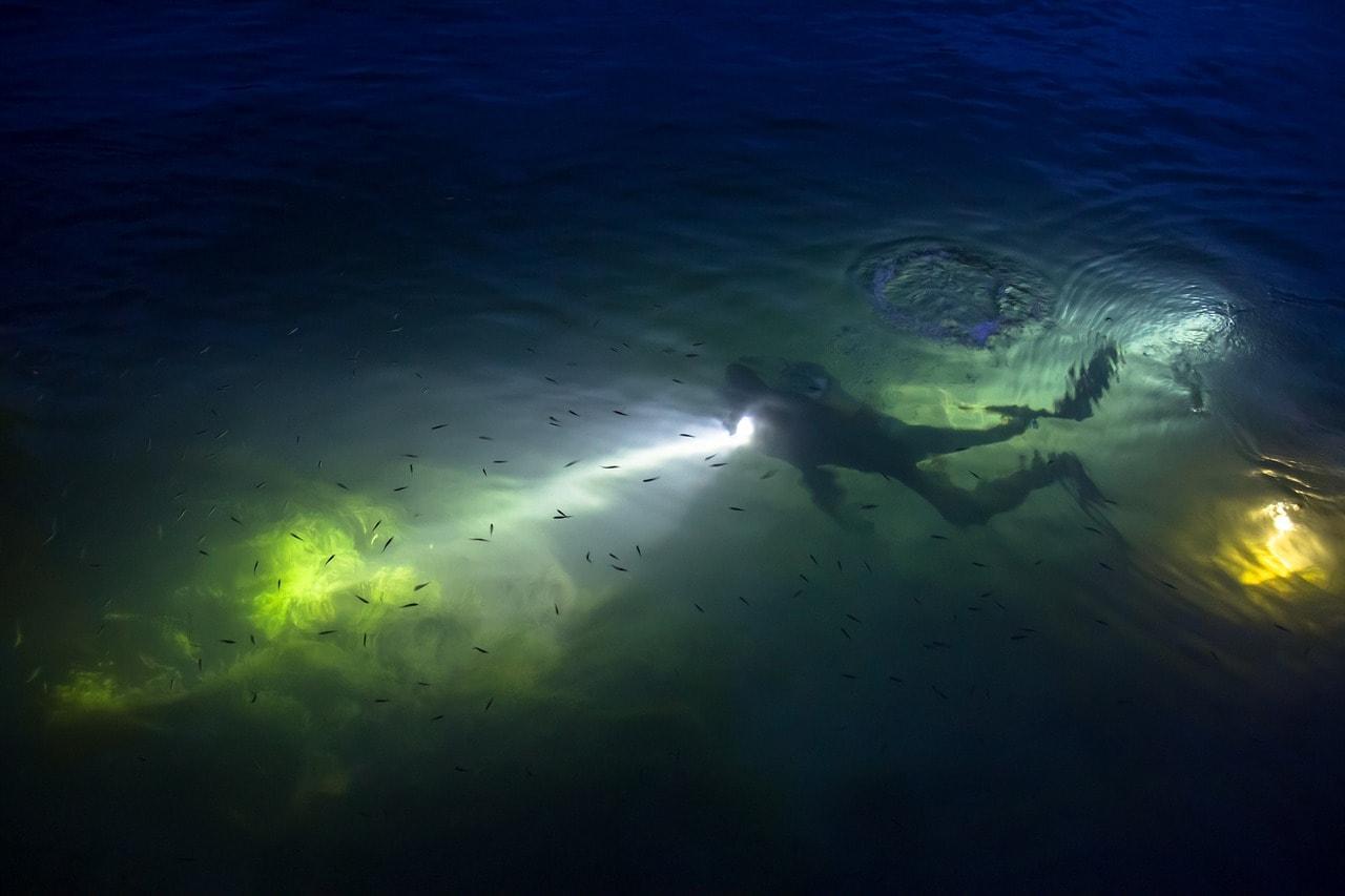 Plonger nocturne, pourquoi il faut essayer ?